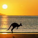 Путешествие в Австралию!